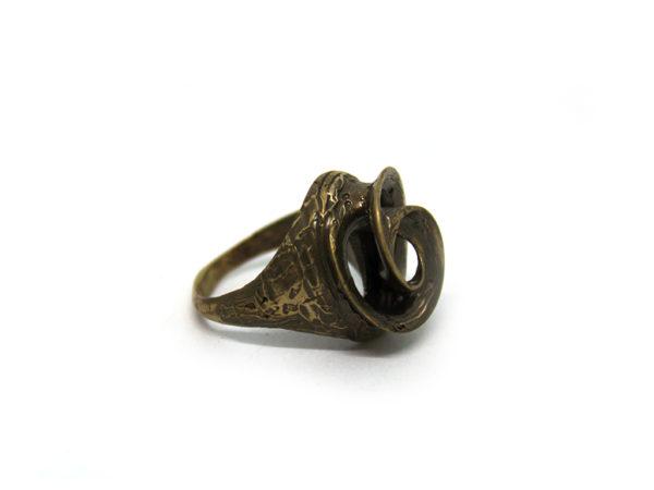 anello vortice medio icudal