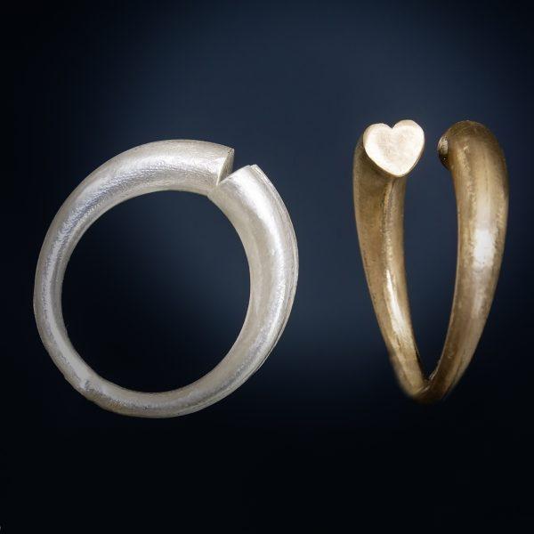 anello sezione di cuore icudal