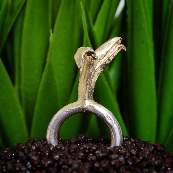 anello banana icudal